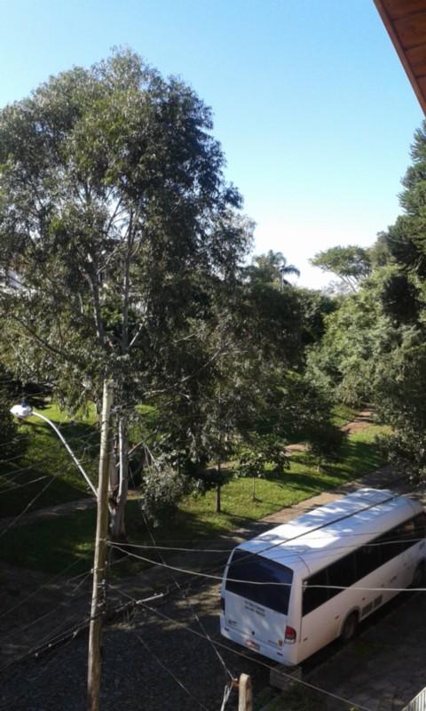 Casa 3 Dorm, Vila Ipiranga, Porto Alegre (CS31003921) - Foto 23