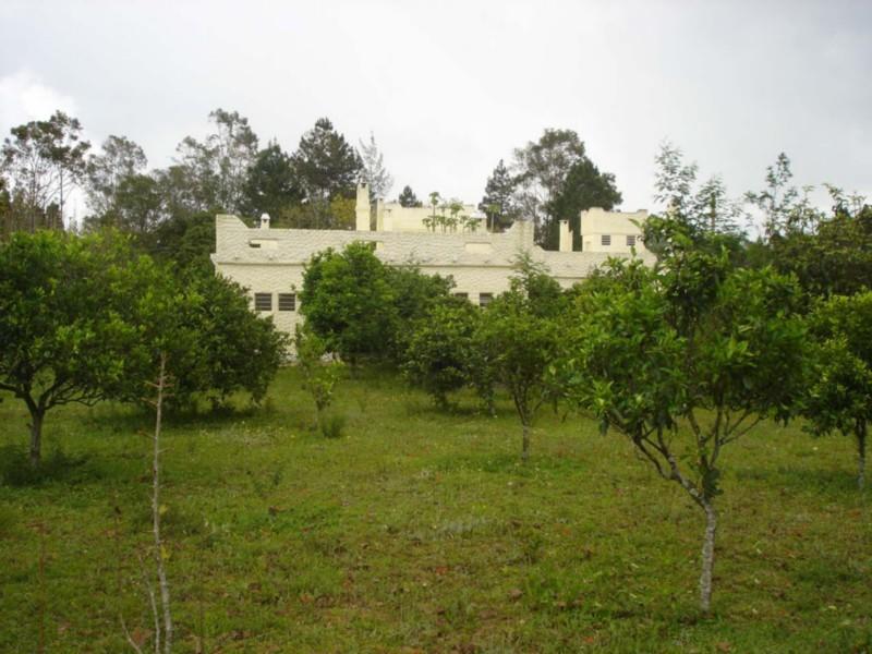 Sítio Morro Grande - Sítio 5 Dorm, Centro, Águas Claras (CS31003985) - Foto 37