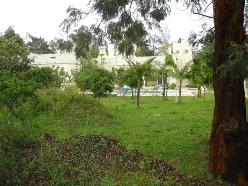 Sítio Morro Grande - Sítio 5 Dorm, Centro, Águas Claras (CS31003985) - Foto 38