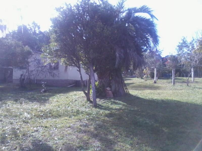 Sítio, Zona Rural, Sentinela do Sul (CS31004011) - Foto 2