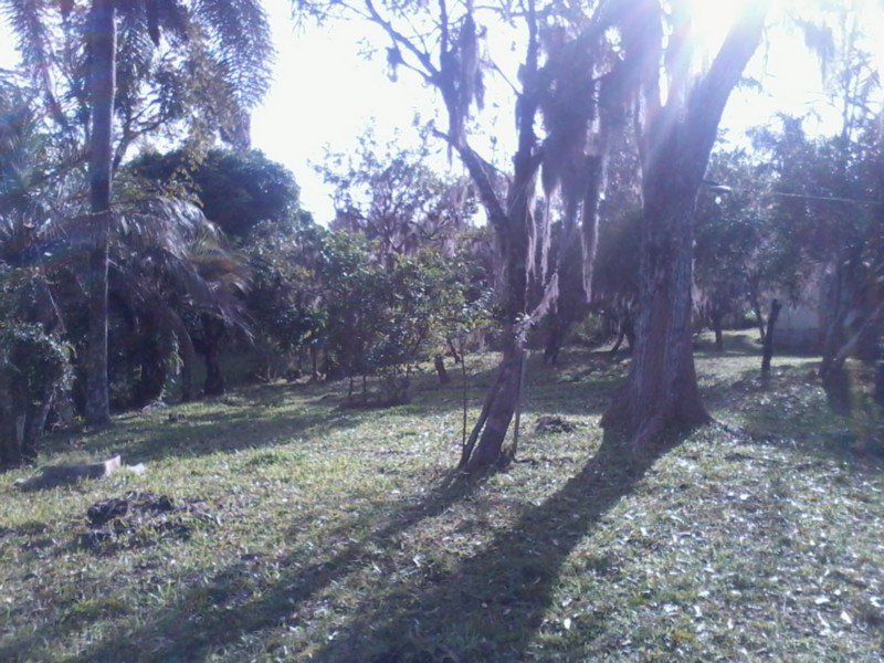 Sítio, Zona Rural, Sentinela do Sul (CS31004011) - Foto 3