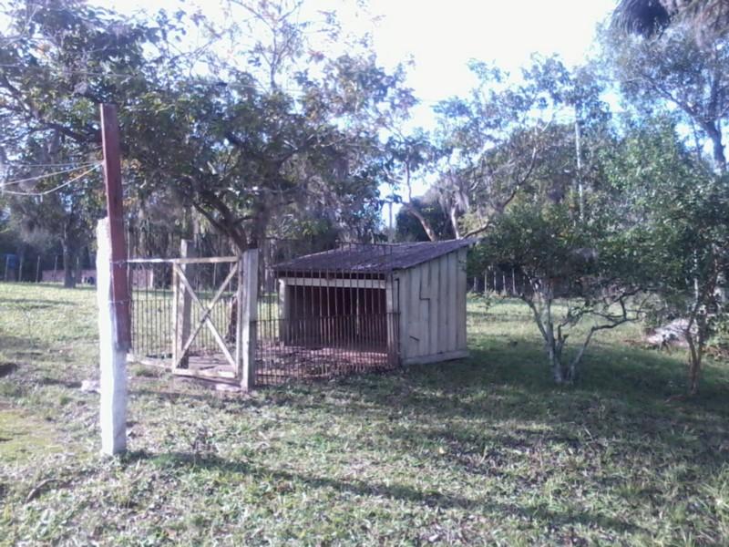 Sítio, Zona Rural, Sentinela do Sul (CS31004011) - Foto 5