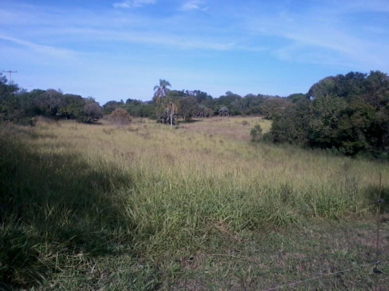 Sítio, Zona Rural, Sentinela do Sul (CS31004011) - Foto 9