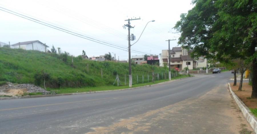 Sperinde Imóveis - Terreno, Protásio Alves - Foto 2