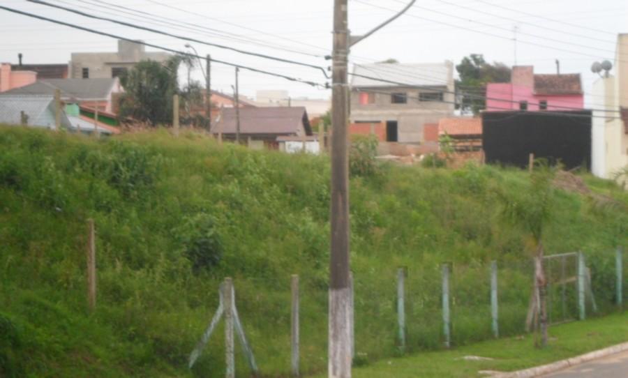 Sperinde Imóveis - Terreno, Protásio Alves - Foto 5