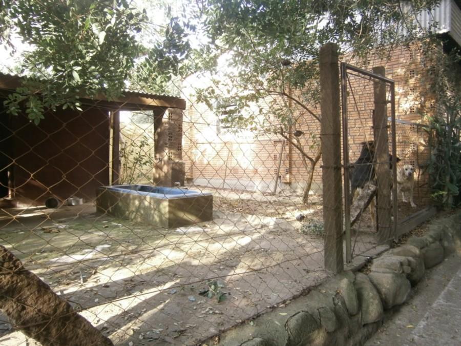 Casa 4 Dorm, Alegria, Guaiba (CS31004695) - Foto 49