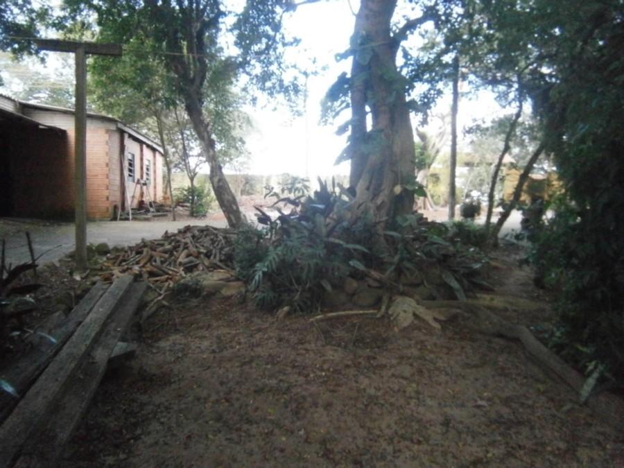 Casa 4 Dorm, Alegria, Guaiba (CS31004695) - Foto 50