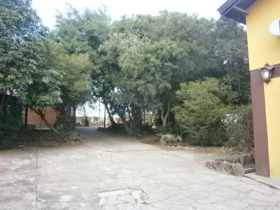 Casa 4 Dorm, Alegria, Guaiba (CS31004695) - Foto 6