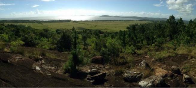 Sitio Monte Belo - Sítio, Itapuã, Viamão (CS31004721) - Foto 3