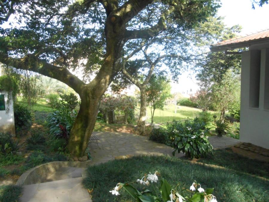 Casa em Tristeza - Foto 4