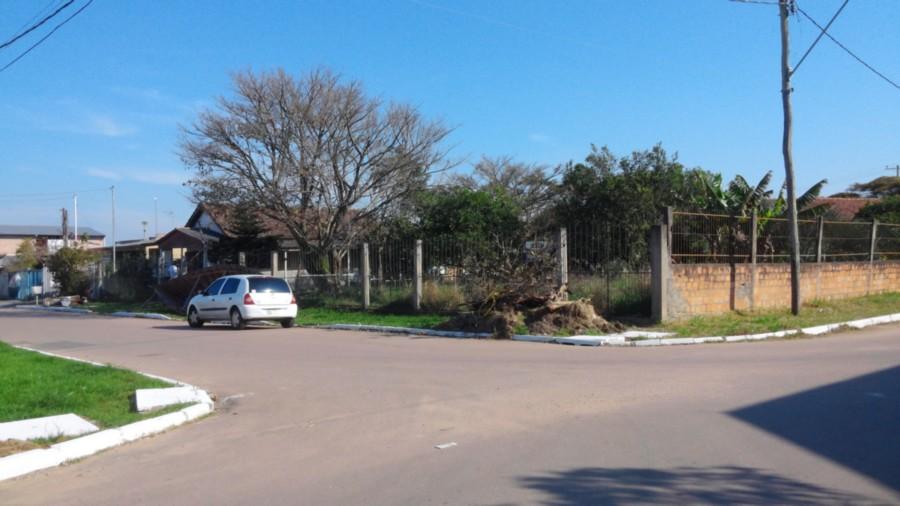 Terreno, Centro, Eldorado do Sul (CS31005057) - Foto 6