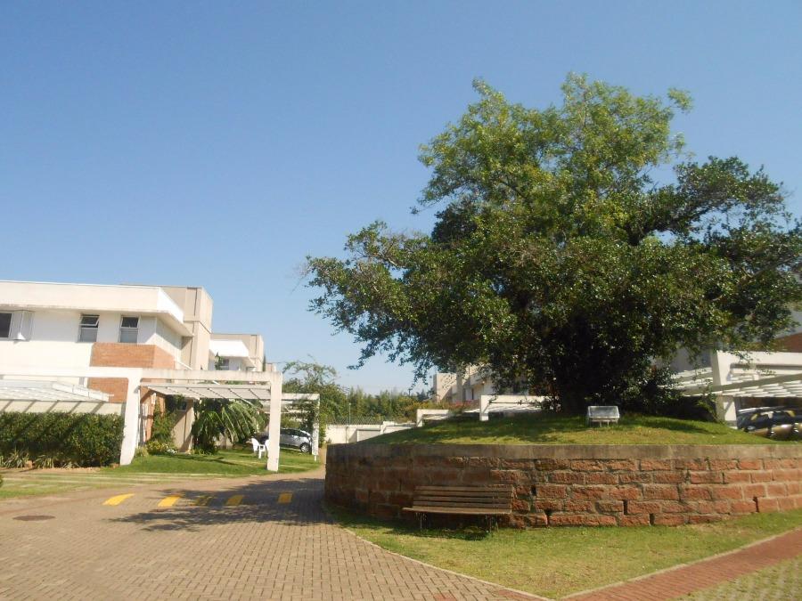 Casa 3 Dorm, Agronomia, Porto Alegre (CS31005492) - Foto 40