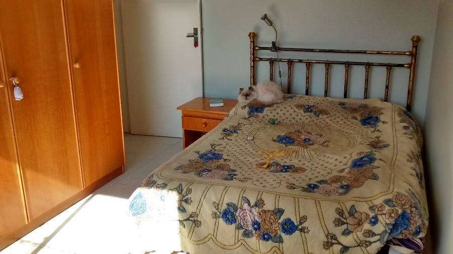 Ed. Maldonado - Apto 2 Dorm, Santana, Porto Alegre (CS36005479) - Foto 6